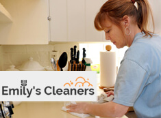 Domestic Cleaners Islington