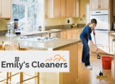Domestic Cleaners N1