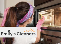 Oven Cleaning Islington