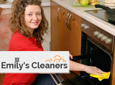 Oven Cleaning N1