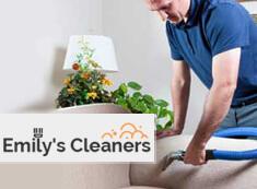 Sofa Cleaning N1