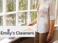 Spring Cleaners N1