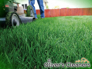 grass-cutting-services-islington
