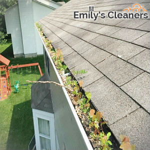 reliable-gutter-cleaning-islington